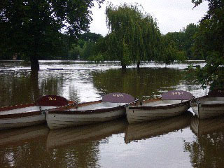 Avon rowboats after the flood!
