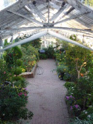 Greenhouses at Rideau Hall